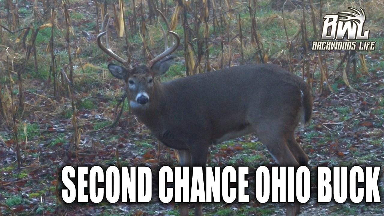 Second Chance Ohio Buck