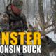 Monster Wisconsin Buck